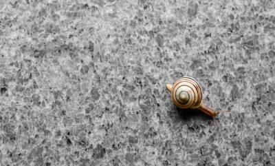 Granitas – ne tik kapavietėse, tačiau ir interjere?